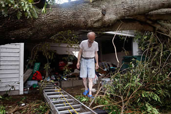 Home damaged by Large Tree